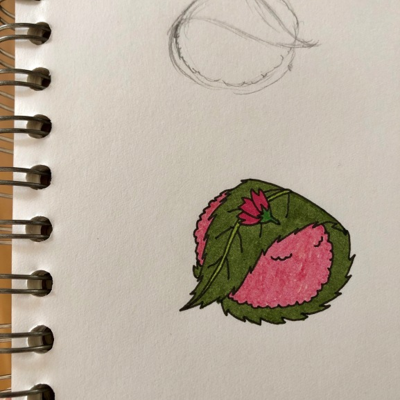 Sakura Mochi Sketch